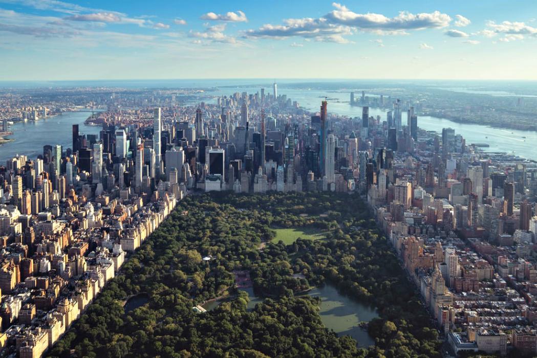 Il bosco in città: Central Park