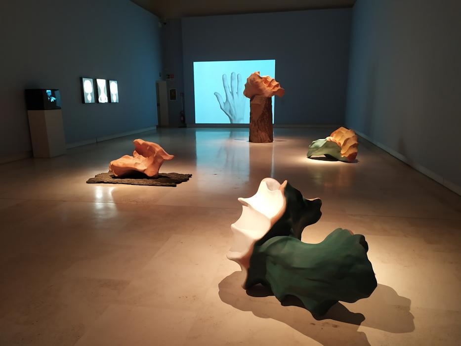 Sublimi Anatomie – Palazzo delle Esposizioni