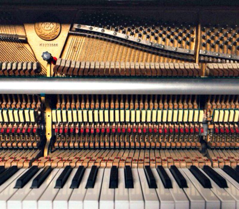 Pillole musicali: il pianoforte